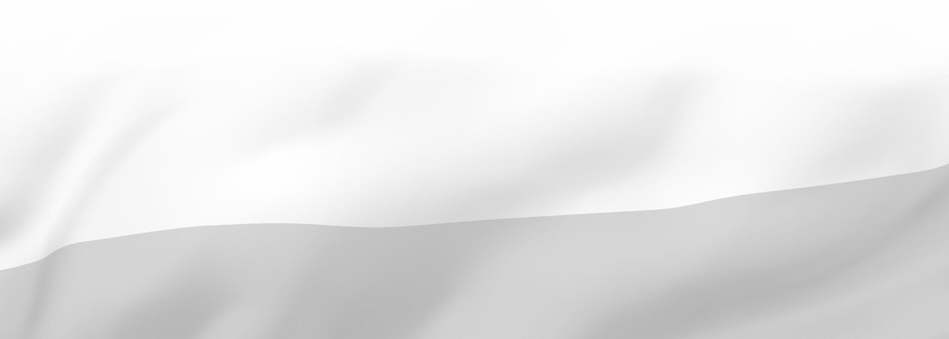 GMS_flaga