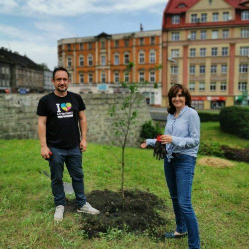 Drzewa są naszymi płucami…